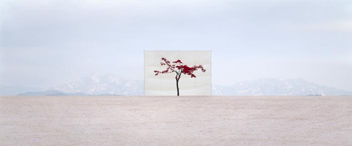 myoung ho lee - artiste coréen