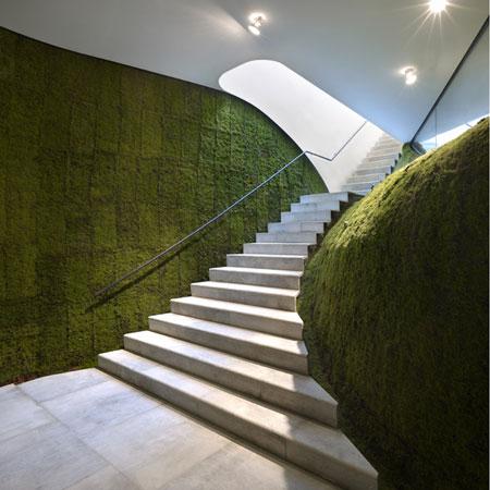 architecture vegetale