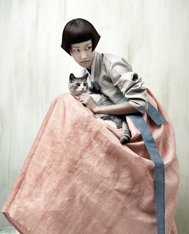 coréenne chat hanbok - vogue korea