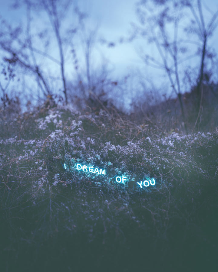 Jung-Lee-I-Dream-Of-You-2012
