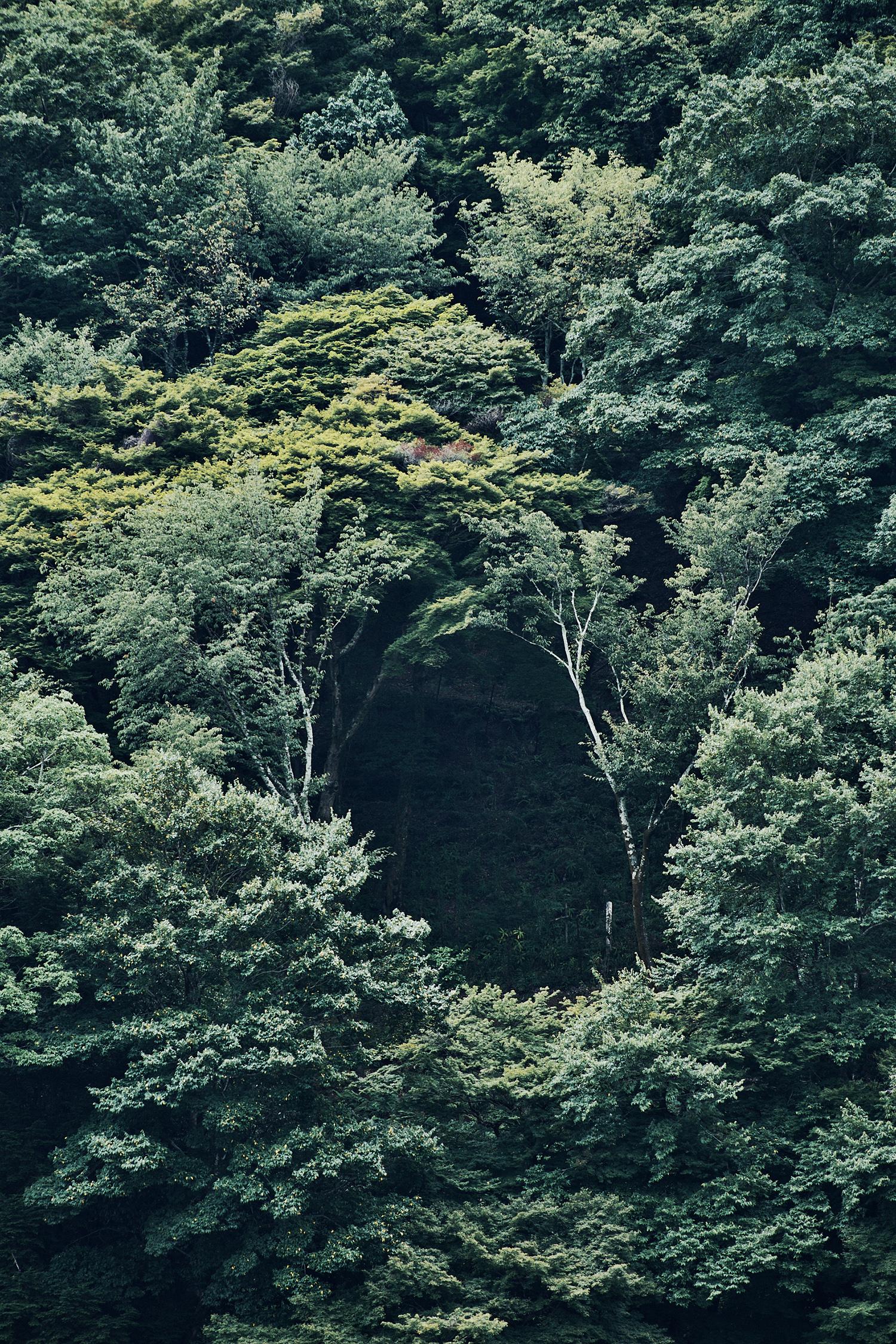 Pyokisik - montagne - photographe coréen